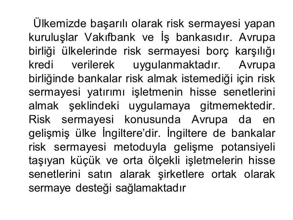 Ülkemizde başarılı olarak risk sermayesi yapan kuruluşlar Vakıfbank ve İş bankasıdır. Avrupa birliği ülkelerinde risk sermayesi borç karşılığı kredi v