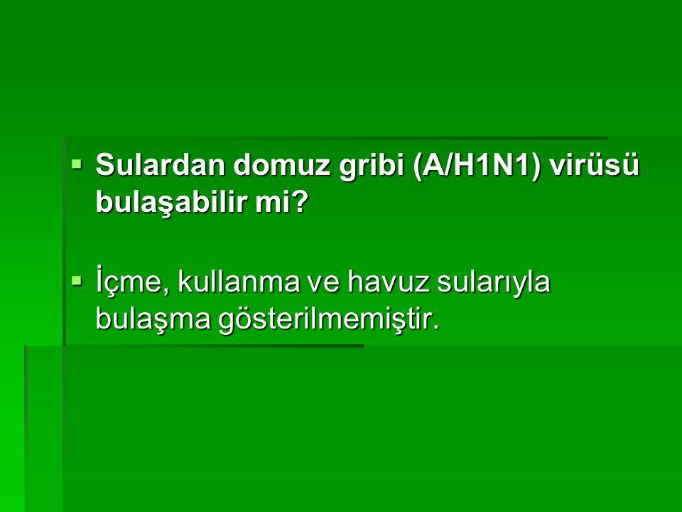  Sulardan domuz gribi (A/H1N1) virüsü bulaşabilir mi.