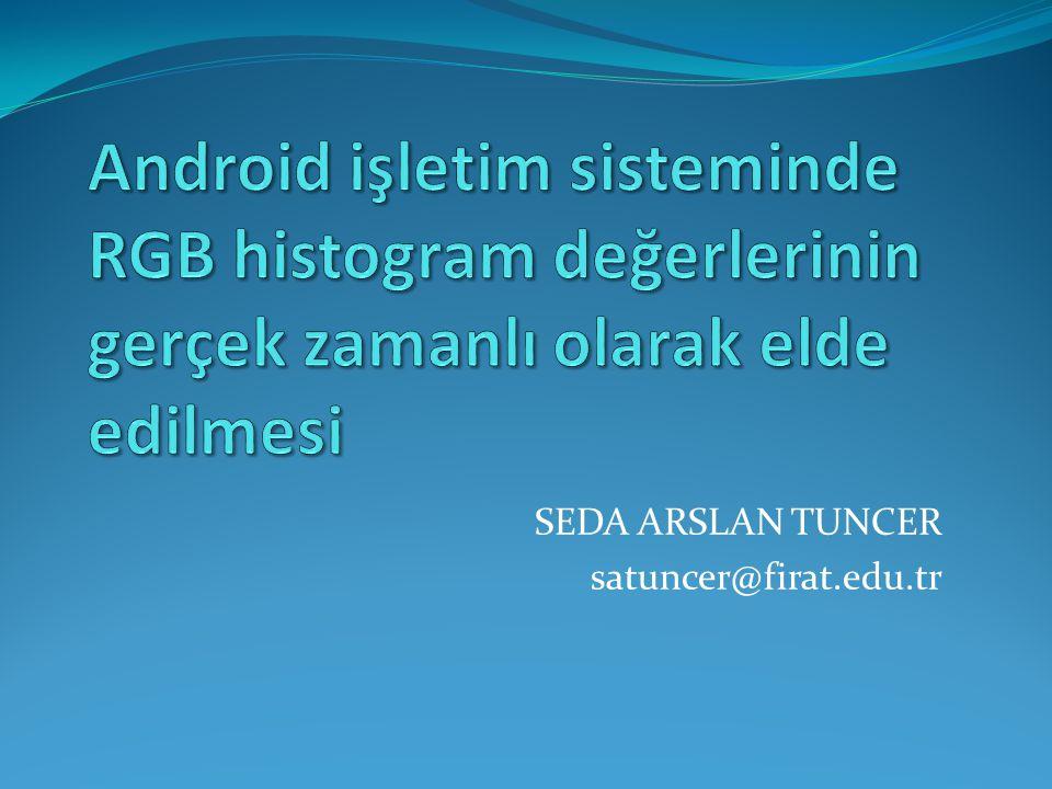 SEDA ARSLAN TUNCER satuncer@firat.edu.tr