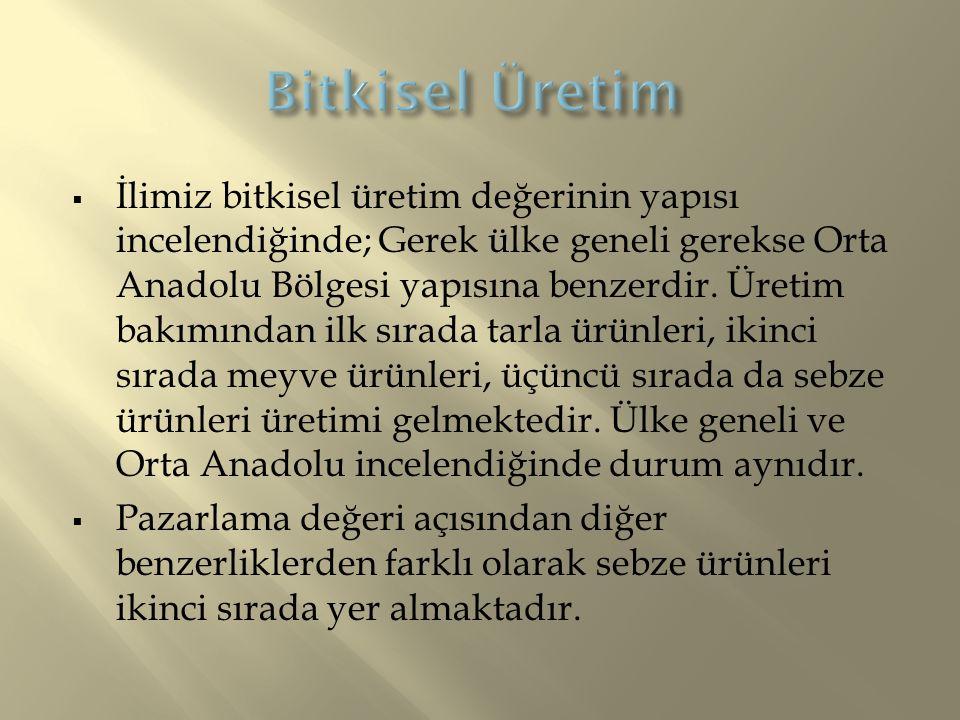  İlimiz bitkisel üretim değerinin yapısı incelendiğinde; Gerek ülke geneli gerekse Orta Anadolu Bölgesi yapısına benzerdir.