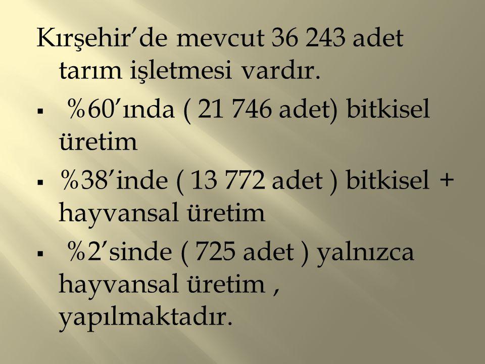Kırşehir'de mevcut 36 243 adet tarım işletmesi vardır.