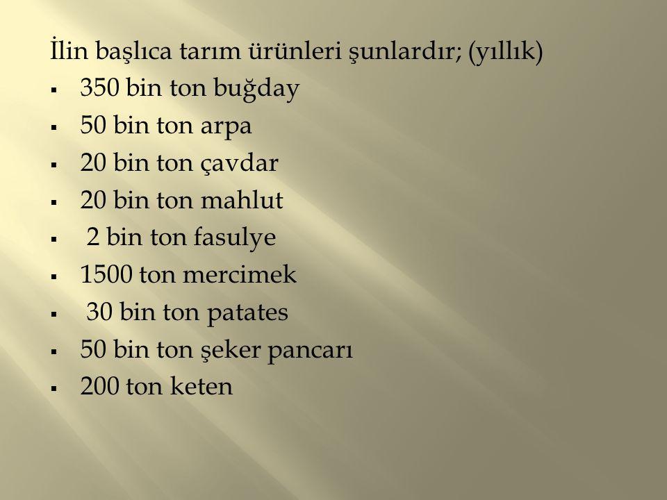 İlin başlıca tarım ürünleri şunlardır; (yıllık)  350 bin ton buğday  50 bin ton arpa  20 bin ton çavdar  20 bin ton mahlut  2 bin ton fasulye  1500 ton mercimek  30 bin ton patates  50 bin ton şeker pancarı  200 ton keten