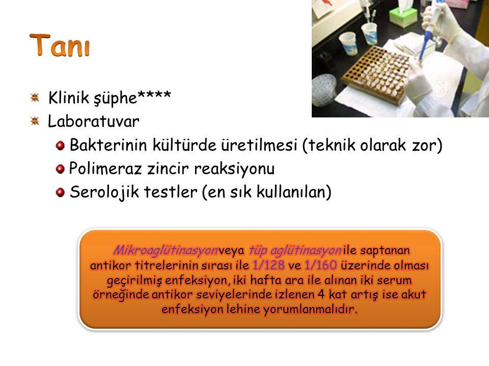 Klinik şüphe**** Laboratuvar Bakterinin kültürde üretilmesi (teknik olarak zor) Polimeraz zincir reaksiyonu Serolojik testler (en sık kullanılan)