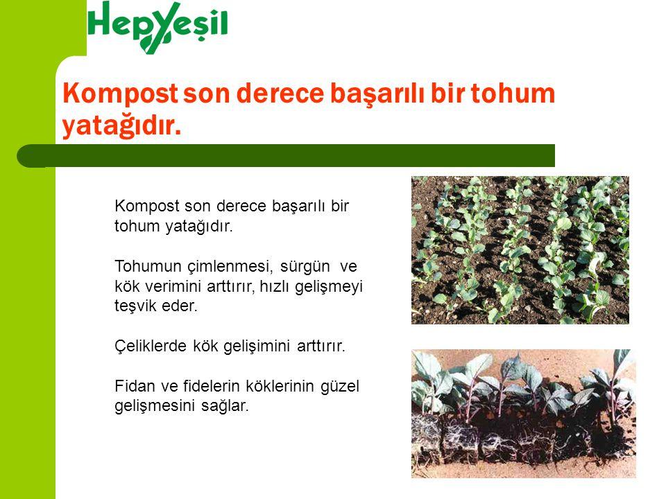Kompost son derece başarılı bir tohum yatağıdır. Tohumun çimlenmesi, sürgün ve kök verimini arttırır, hızlı gelişmeyi teşvik eder. Çeliklerde kök geli