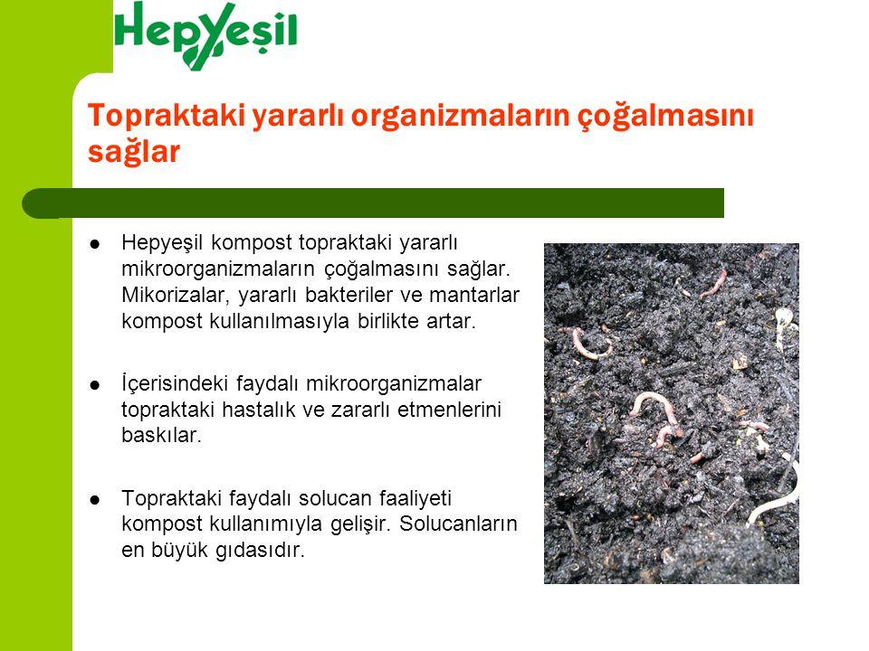 Topraktaki yararlı organizmaların çoğalmasını sağlar Hepyeşil kompost topraktaki yararlı mikroorganizmaların çoğalmasını sağlar. Mikorizalar, yararlı