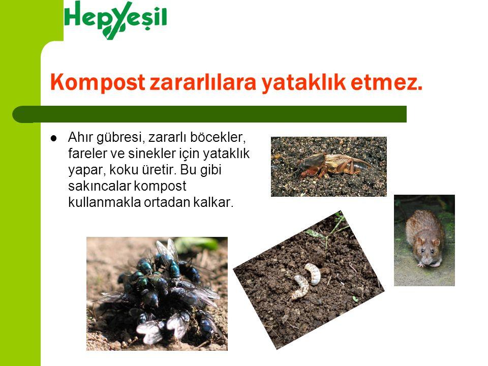 Kompost zararlılara yataklık etmez. Ahır gübresi, zararlı böcekler, fareler ve sinekler için yataklık yapar, koku üretir. Bu gibi sakıncalar kompost k