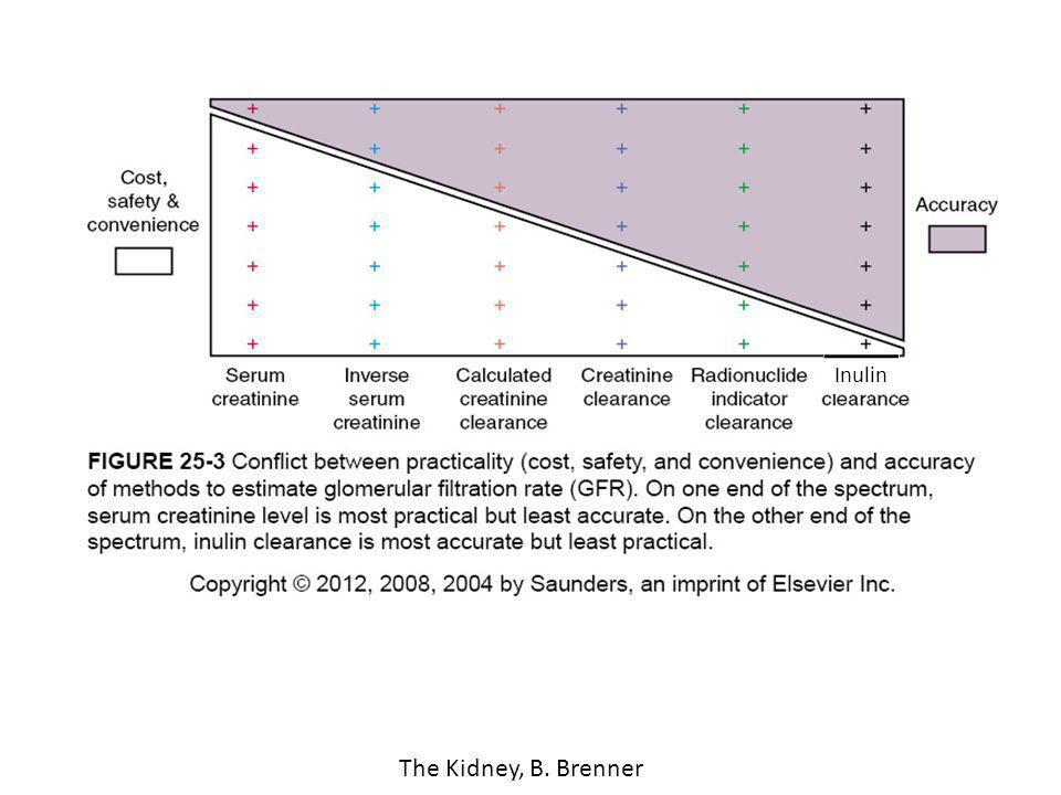 The Kidney, B. Brenner Inulin