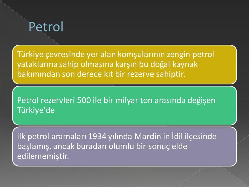 Türkiye çevresinde yer alan komşularının zengin petrol yataklarına sahip olmasına karşın bu doğal kaynak bakımından son derece kıt bir rezerve sahiptir.