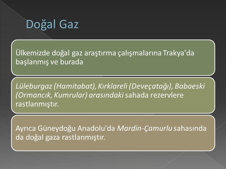Ülkemizde doğal gaz araştırma çalışmalarına Trakya da başlanmış ve burada Lüleburgaz (Hamitabat), Kırklareli (Deveçatağı), Babaeski (Ormancık, Kumrular) arasındaki sahada rezervlere rastlanmıştır.