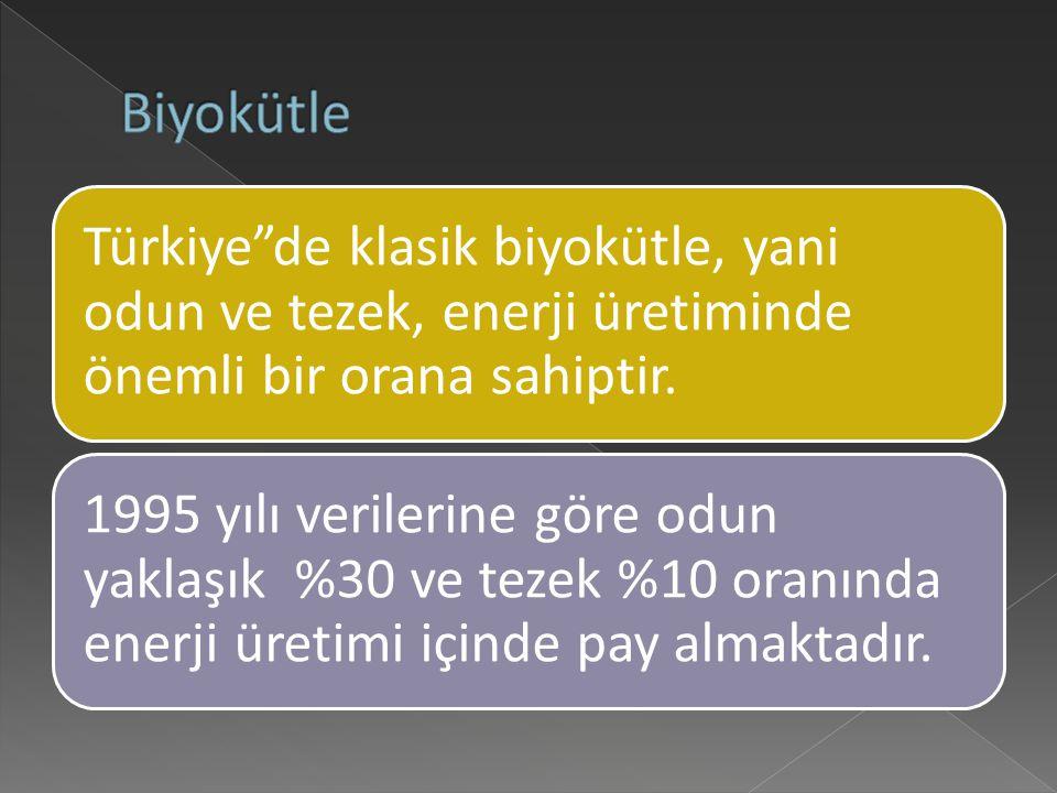 Türkiye de klasik biyokütle, yani odun ve tezek, enerji üretiminde önemli bir orana sahiptir.