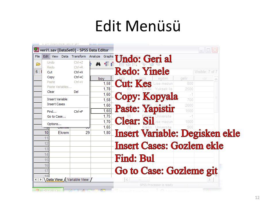 Edit Menüsü 12