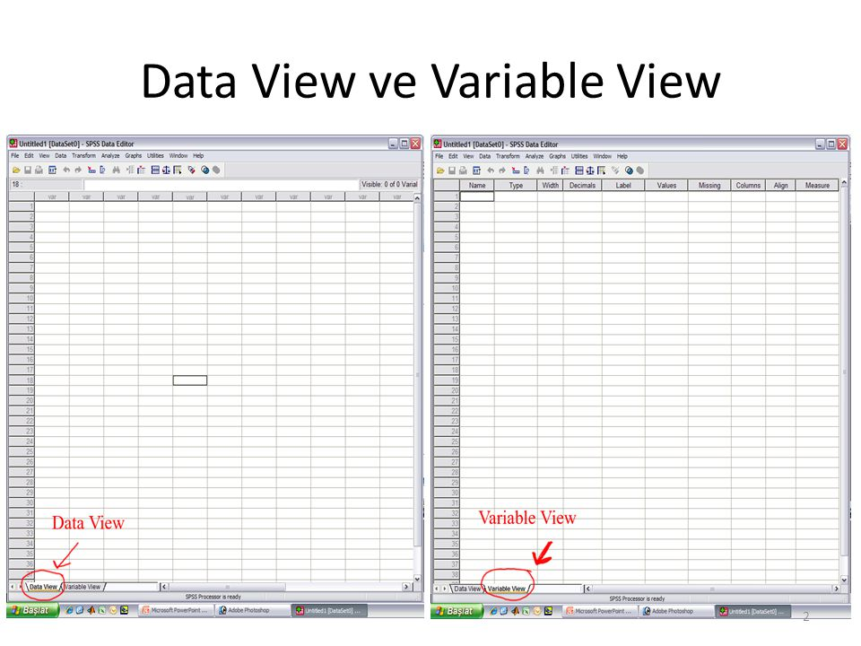 Data View ve Variable View 2