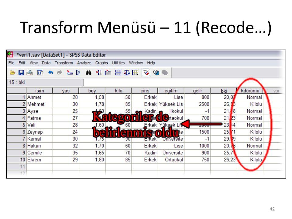 Transform Menüsü – 11 (Recode…) 42