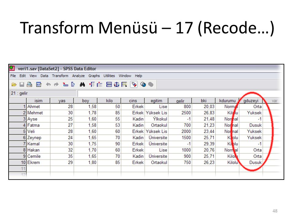 Transform Menüsü – 17 (Recode…) 48
