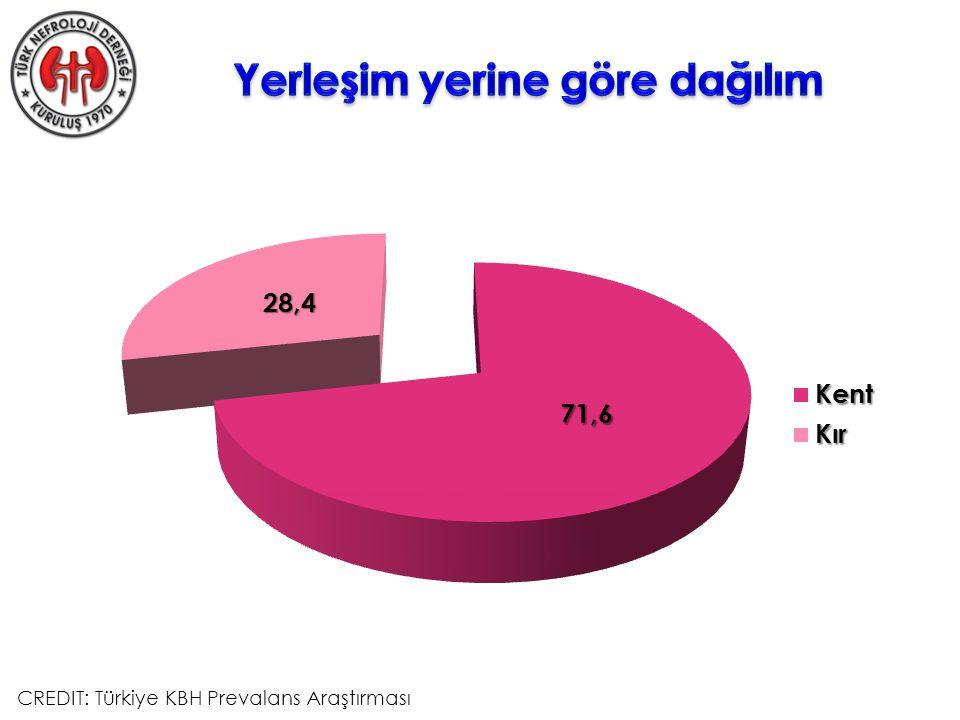 CREDIT: Türkiye KBH Prevalans Araştırması