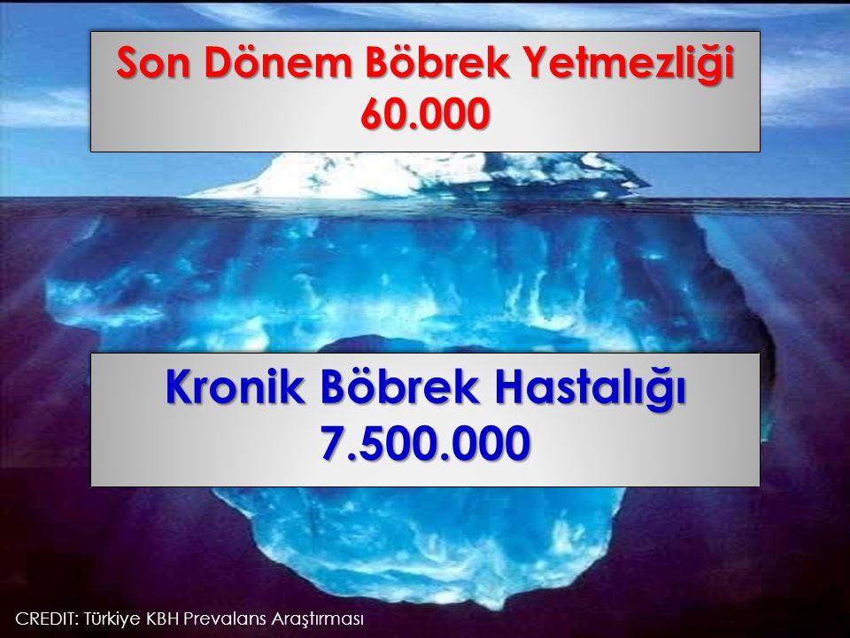 Son Dönem Böbrek Yetmezliği 60.000 60.000 Kronik Böbrek Hastalığı 7.500.000 7.500.000 CREDIT: Türkiye KBH Prevalans Araştırması