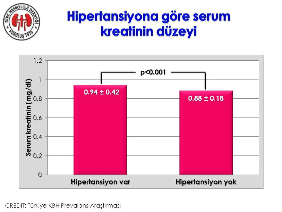 p<0.001 0.94 ± 0.42 0.88 ± 0.18 CREDIT: Türkiye KBH Prevalans Araştırması