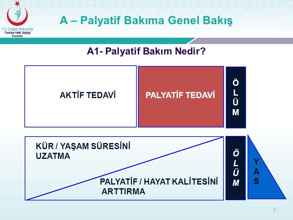 24 B – Türkiye'de Palyatif Bakım B2 – Palya-Türk Projesi