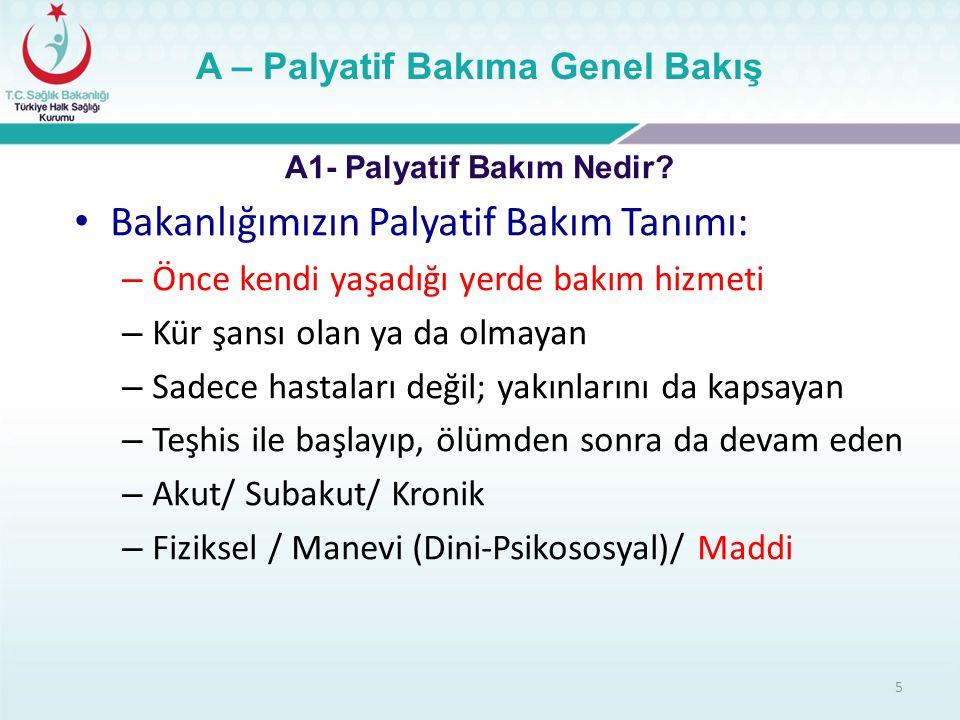 26 B – Türkiye'de Palyatif Bakım B2 – Palya-Türk Projesi Birinci Seviye: Toplum Temelli – Aile hekimleri – Evde Bakım Hastane Merkezleri – Akut Bakım Merkezleri: Birinci, İkinci Seviye, Üçüncü Seviye – Kronik Bakım Merkezleri Hospis(Destek Evi): Gönüllüler ve STK'lar Her Seviyede