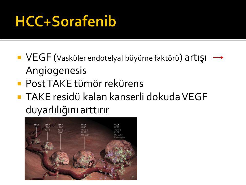  VEGF ( Vasküler endotelyal büyüme faktörü ) artışı Angiogenesis  Post TAKE tümör rekürens  TAKE residü kalan kanserli dokuda VEGF duyarlılığını arttırır