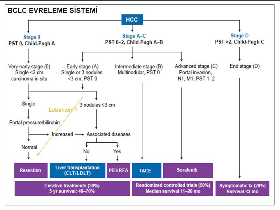  HCC- BCLC B (intermediate stage)  Heterojen bir grup  (one size fits all)  TEDAVİDE  Multidisipliner yaklaşım