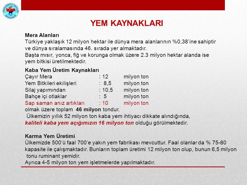 Mera Alanları Türkiye yaklaşık 12 milyon hektar ile dünya mera alanlarının %0,38'ine sahiptir ve dünya sıralamasında 46. sırada yer almaktadır. Başta