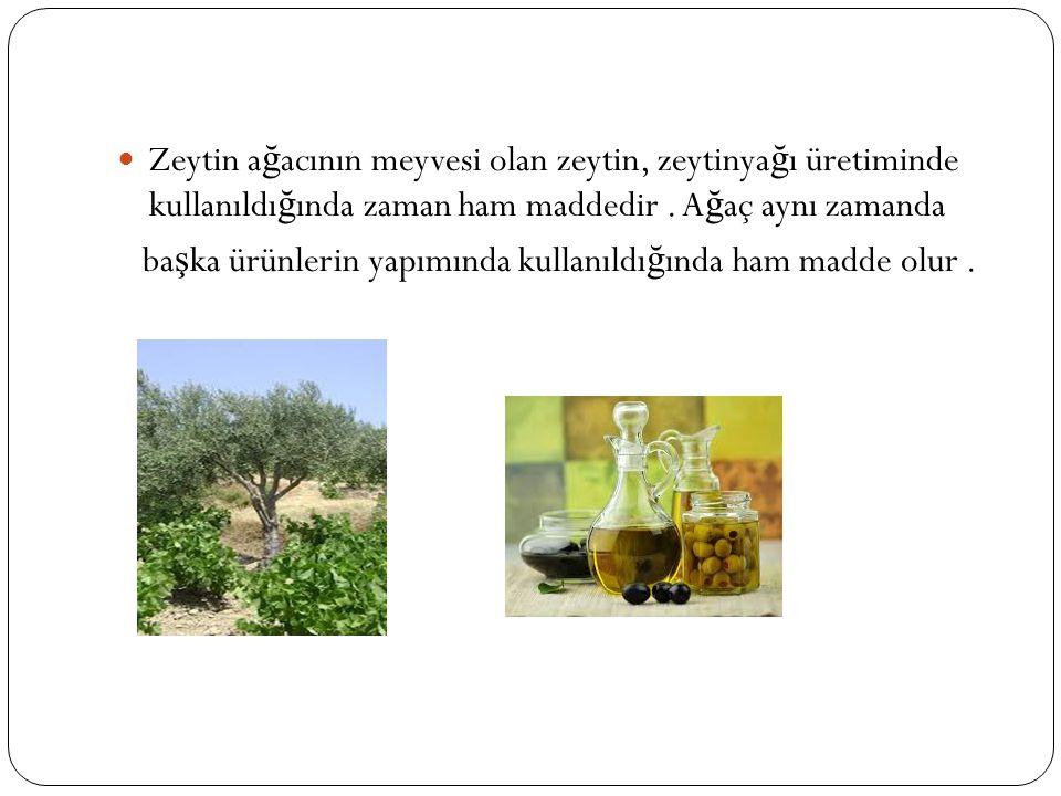 Zeytin a ğ acının meyvesi olan zeytin, zeytinya ğ ı üretiminde kullanıldı ğ ında zaman ham maddedir.