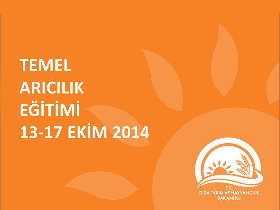TEMEL ARICILIK EĞİTİMİ 13-17 EKİM 2014