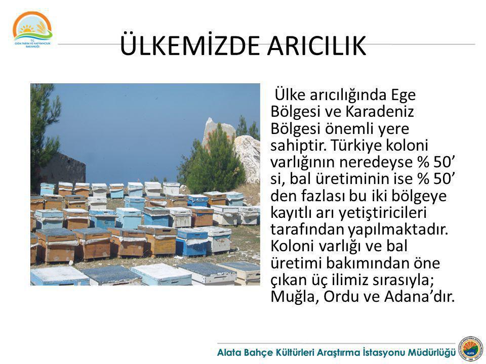ÜLKEMİZDE ARICILIK Ülke arıcılığında Ege Bölgesi ve Karadeniz Bölgesi önemli yere sahiptir. Türkiye koloni varlığının neredeyse % 50' si, bal üretimin