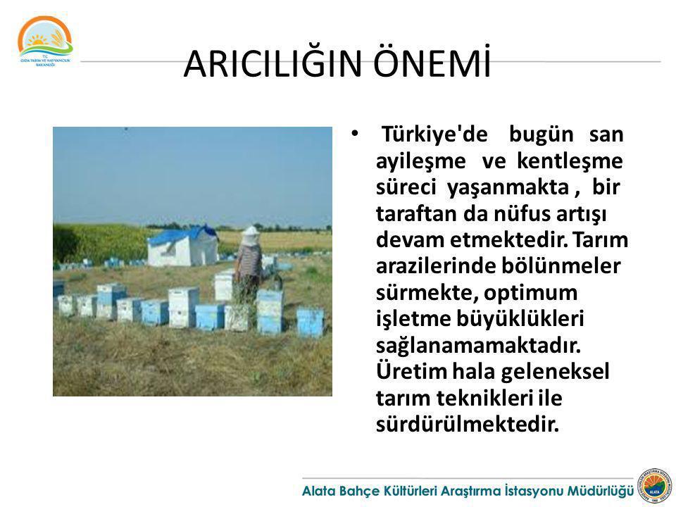 ARICILIĞIN ÖNEMİ Türkiye'de bugün san ayileşme ve kentleşme süreci yaşanmakta, bir taraftan da nüfus artışı devam etmektedir. Tarım arazilerinde bölün