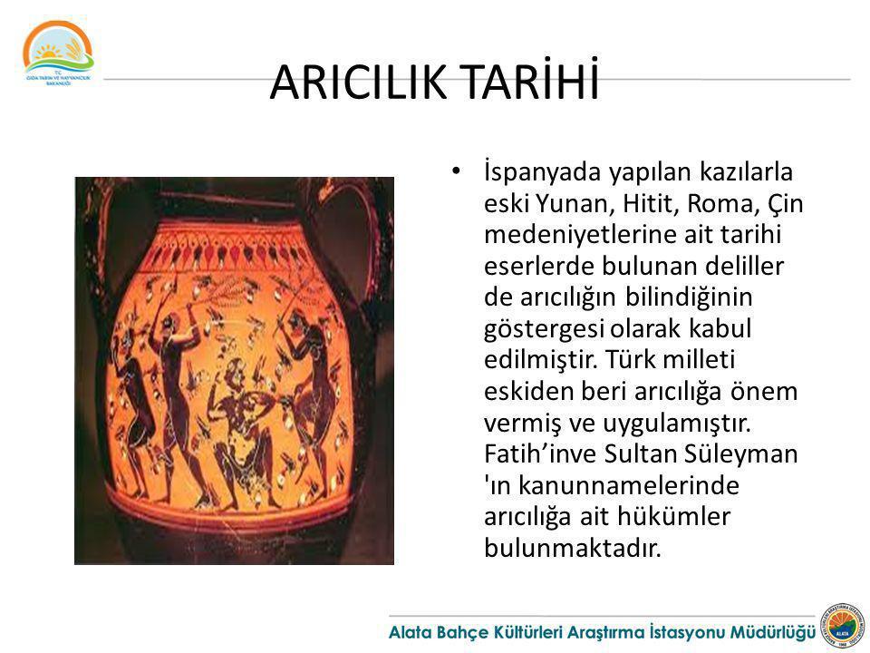 ARICILIK TARİHİ İspanyada yapılan kazılarla eski Yunan, Hitit, Roma, Çin medeniyetlerine ait tarihi eserlerde bulunan deliller de arıcılığın bilindiği