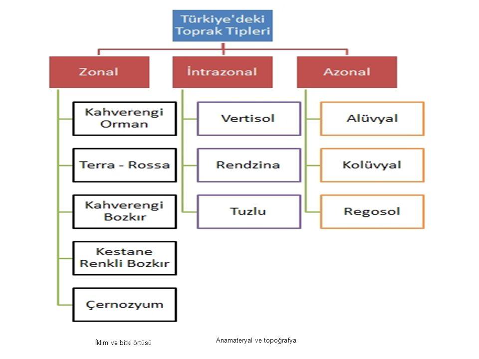 5 İklim ve bitki örtüsü Anamateryal ve topoğrafya