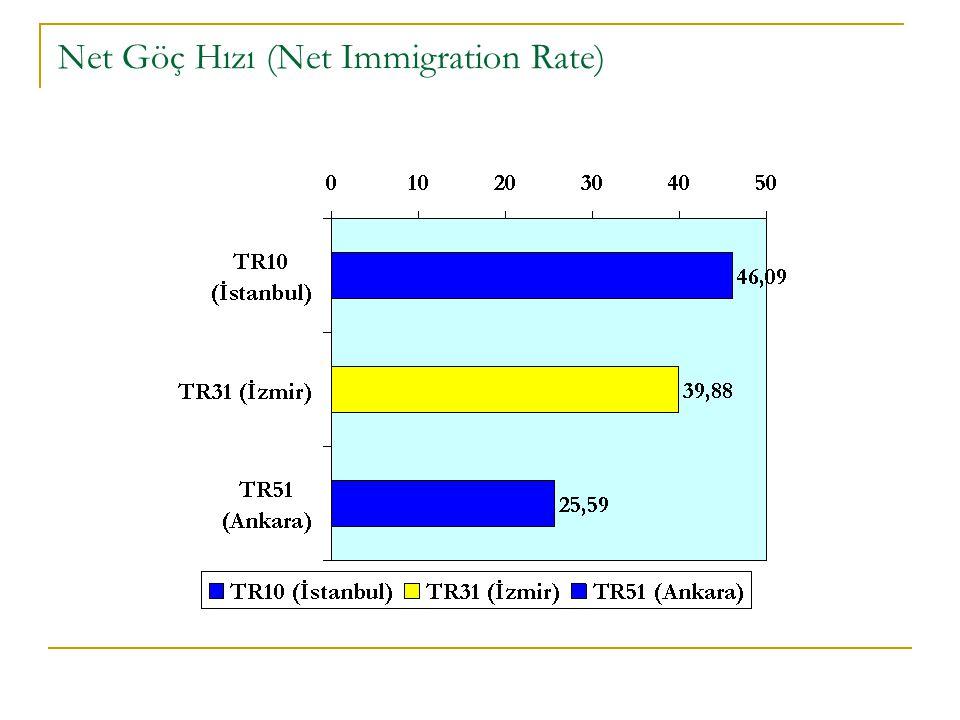 Net Göç Hızı (Net Immigration Rate)