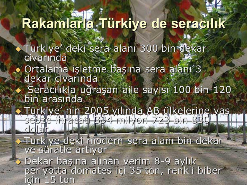 Rakamlarla Türkiye de seracılık  Türkiye' deki sera alanı 300 bin dekar civarında  Ortalama işletme başına sera alanı 3 dekar civarında  Seracılıkl
