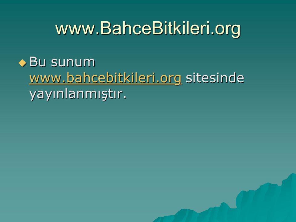 www.BahceBitkileri.org  Bu sunum www.bahcebitkileri.org sitesinde yayınlanmıştır. www.bahcebitkileri.org