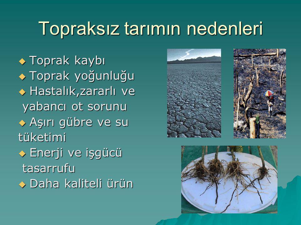 Topraksız tarımın nedenleri  Toprak kaybı  Toprak yoğunluğu  Hastalık,zararlı ve yabancı ot sorunu yabancı ot sorunu  Aşırı gübre ve su tüketimi 