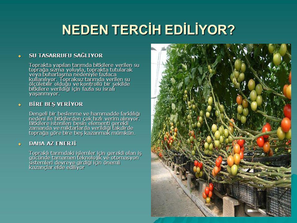 Topraksız tarımın faydaları  Bitkilerin kontrollü beslenmesi  Su ekonomisi ve kontrolü  Enerji ve iş gücünün azaltılması  Hastalık, zararlı ve yabancı ot kontrolü