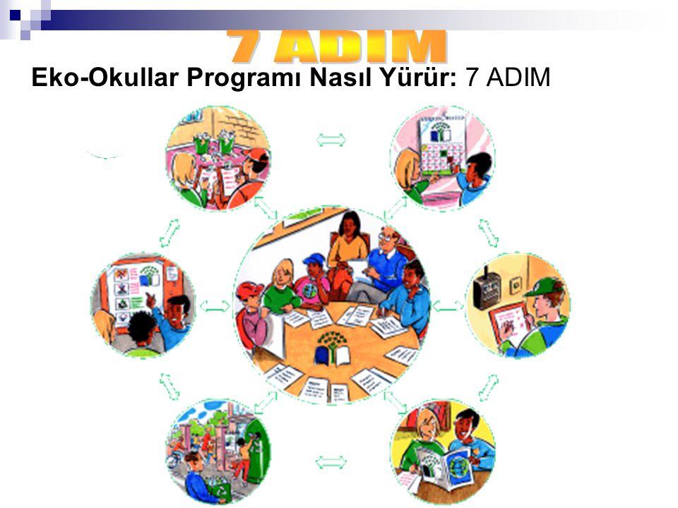 1.Eko-Okullar Komitesi Kurulması :Eko-Okullar projesinin beyni olan komite okulun çevre yöneticileri konumundaki öğrenciler, öğretmenler, görevliler, veliler ve hatta yerel yöneticilerden oluşur ve okulun çevre konularındaki aktivitelerini organize eder ve yönetir.