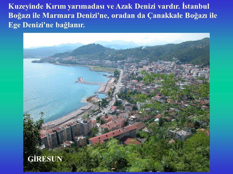Kuzeyinde Kırım yarımadası ve Azak Denizi vardır.