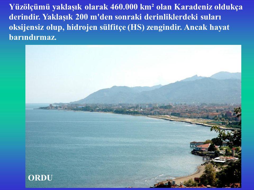 Yüzölçümü yaklaşık olarak 460.000 km² olan Karadeniz oldukça derindir.