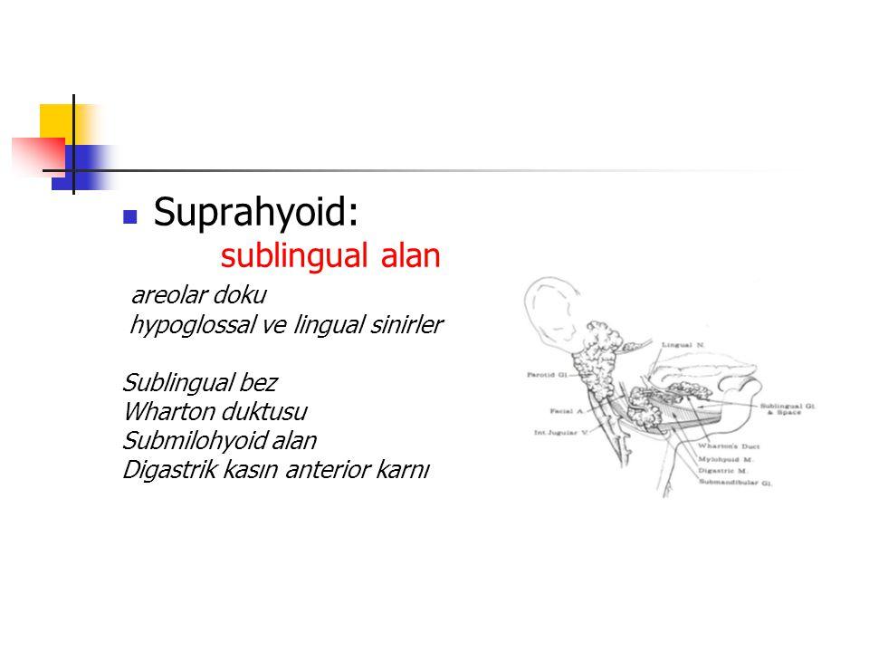 Suprahyoid: sublingual alan areolar doku hypoglossal ve lingual sinirler Sublingual bez Wharton duktusu Submilohyoid alan Digastrik kasın anterior karnı