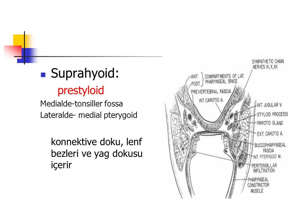 Suprahyoid: prestyloid Medialde-tonsiller fossa Lateralde- medial pterygoid konnektive doku, lenf bezleri ve yag dokusu içerir