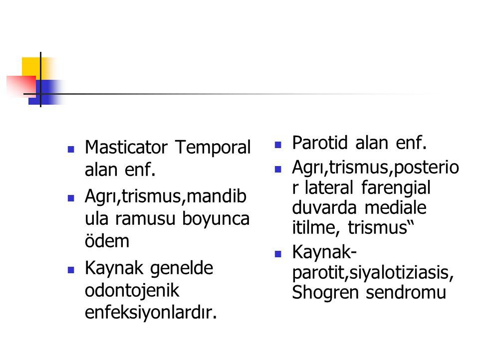 Masticator Temporal alan enf.