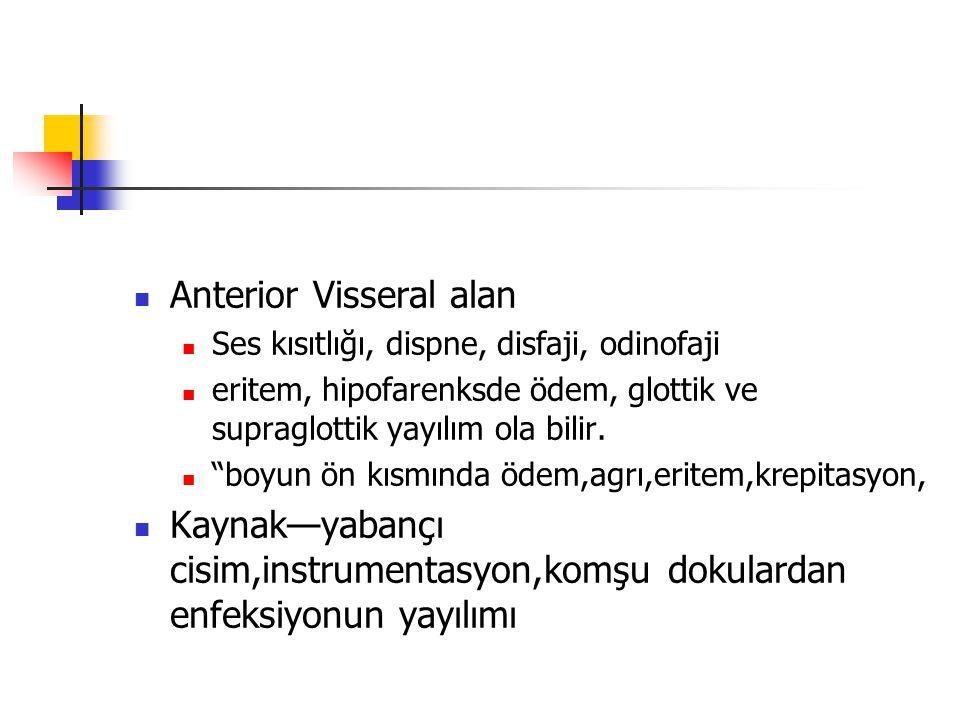 Anterior Visseral alan Ses kısıtlığı, dispne, disfaji, odinofaji eritem, hipofarenksde ödem, glottik ve supraglottik yayılım ola bilir.