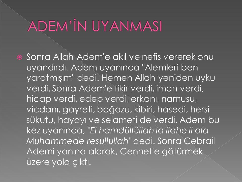  Sonra Allah Adem'e akıl ve nefis vererek onu uyandırdı. Adem uyanınca