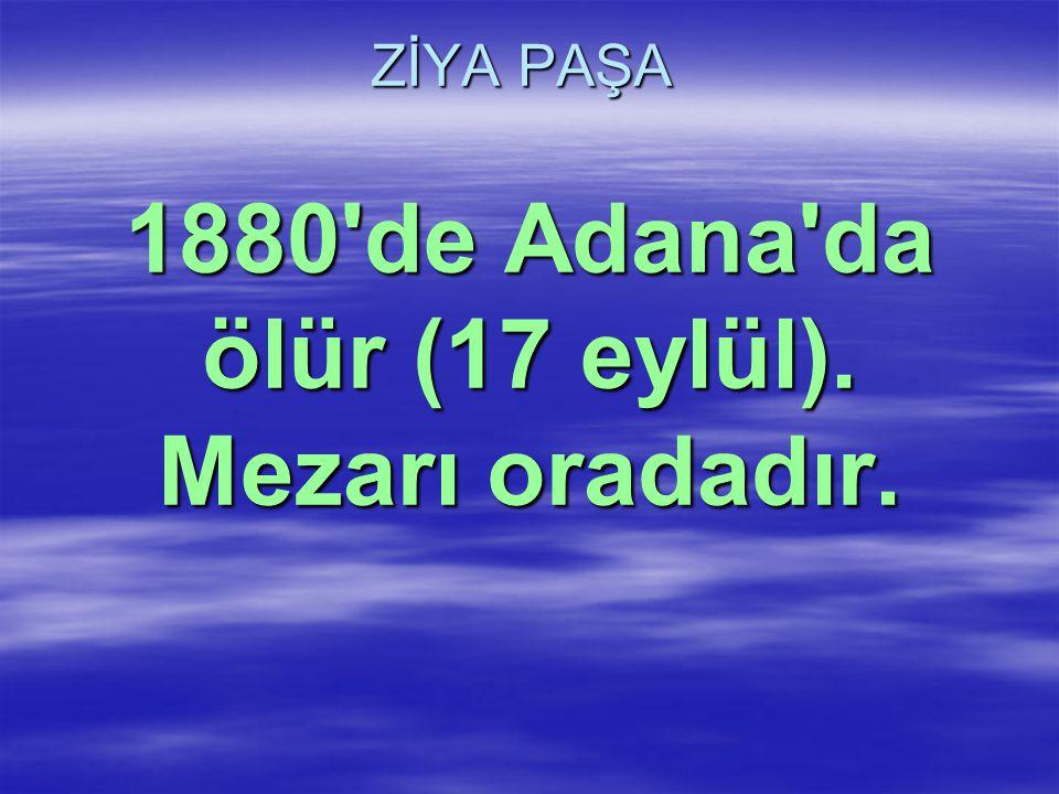 ZİYA PAŞA 1880'de Adana'da ölür (17 eylül). Mezarı oradadır.