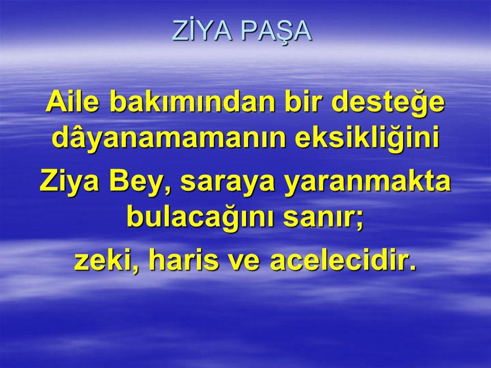 ZİYA PAŞA Birçok kaynaklar hariciye nazırlığına çok yaklaşan Ziya Paşa nın sadrazamlığa göz diktiğini söylerler.