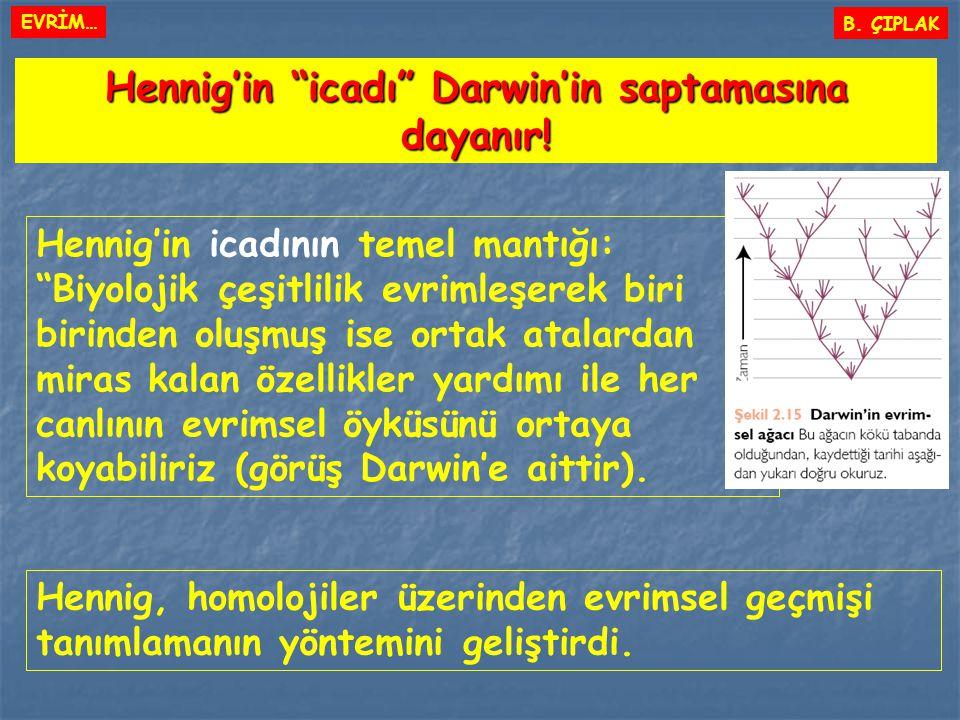 """B. ÇIPLAK Hennig'in """"icadı"""" Darwin'in saptamasına dayanır! Hennig'in icadının temel mantığı: """"Biyolojik çeşitlilik evrimleşerek biri birinden oluşmuş"""