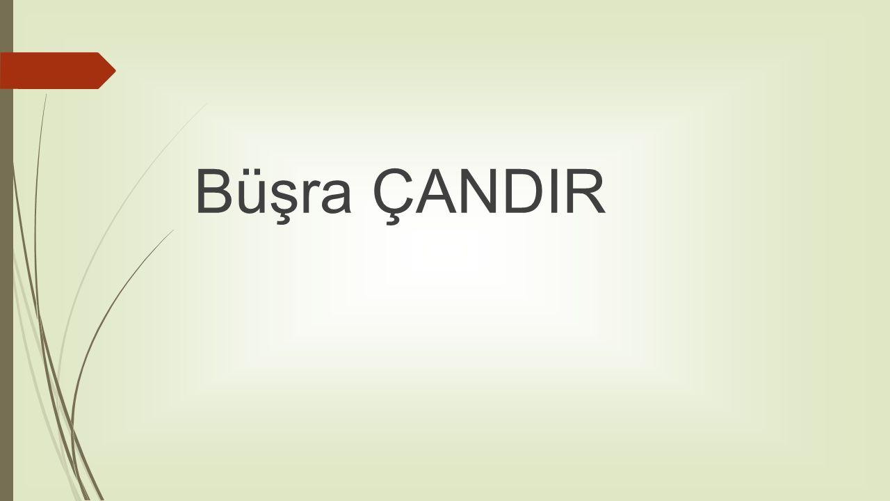 Büşra ÇANDIR