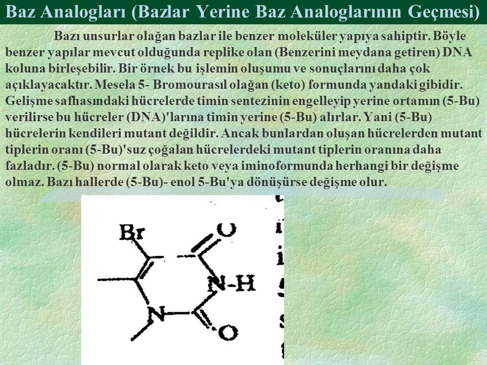 Baz Analogları (Bazlar Yerine Baz Analoglarının Geçmesi) Bazı unsurlar olağan bazlar ile benzer moleküler yapıya sahiptir. Böyle benzer yapılar mevcut
